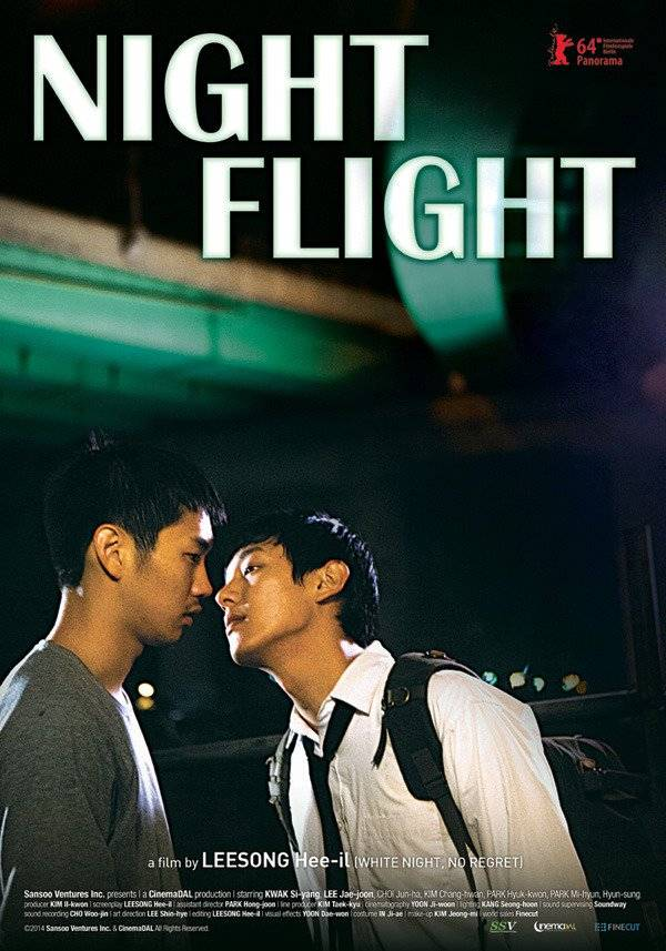 Night Flight (2014)