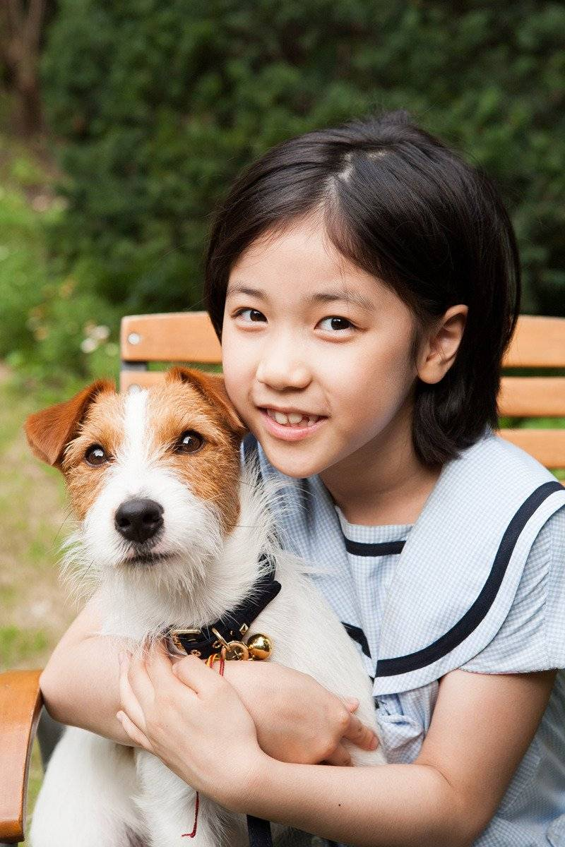 A Perfect Way to Steal a Dog (Korean Movie - 2014) - 개를 훔치는 ...