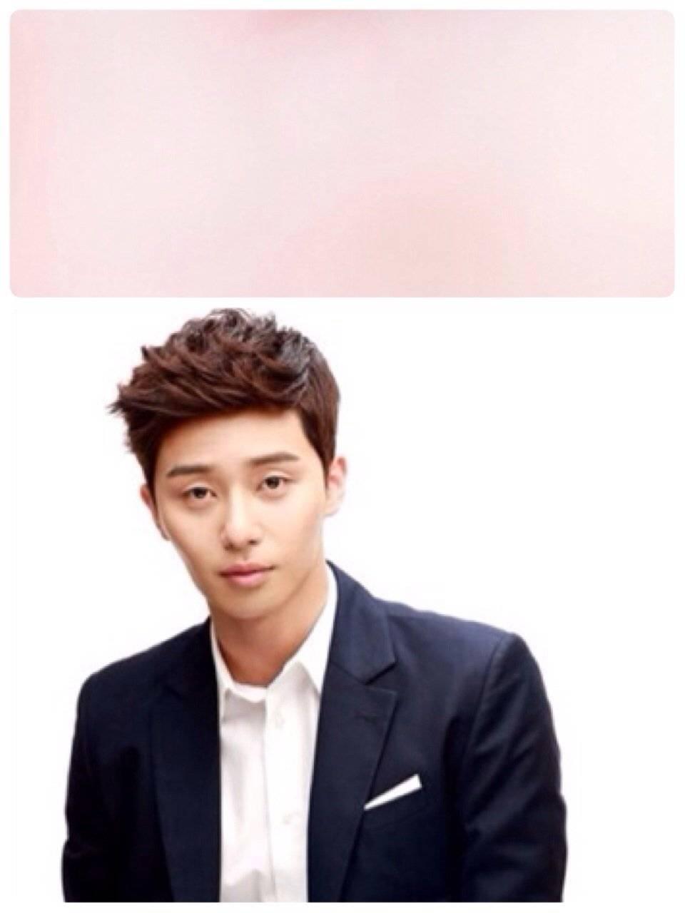 Park Seo Joon 박서준 Picture Gallery Hancinema The