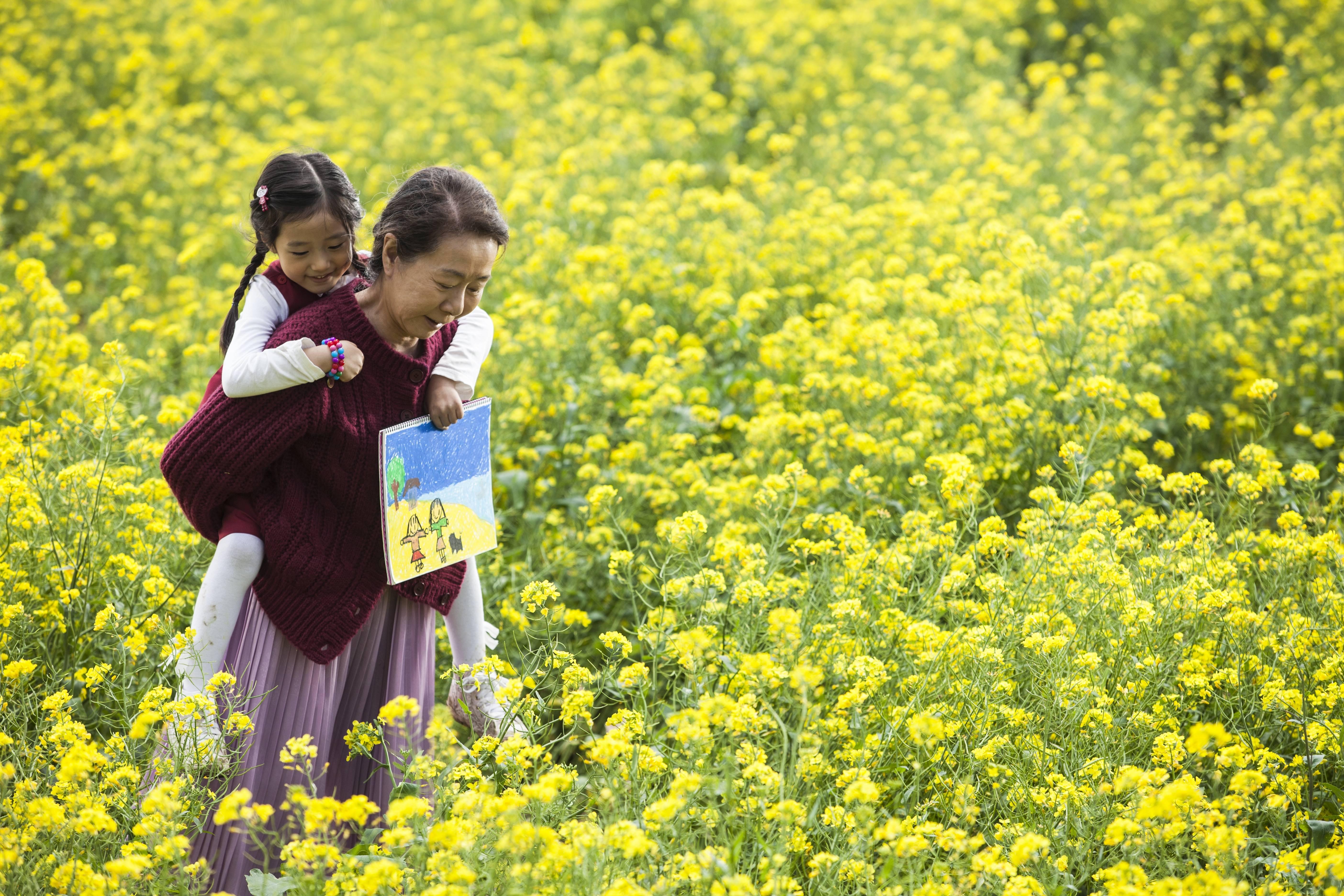 Canola Korean Movie 2015 Hancinema The Korean