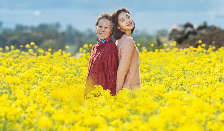 Hancinemas Film Review Canola Hancinema The Korean Movie