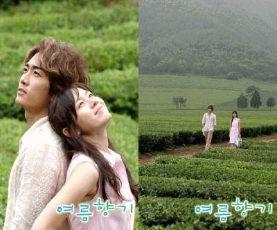 Summer Scent Korean Drama 2003 여름향기 Hancinema