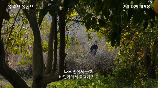 "[Video] Added main trailer for the upcoming Korean documentary ""All Live, Olive"""
