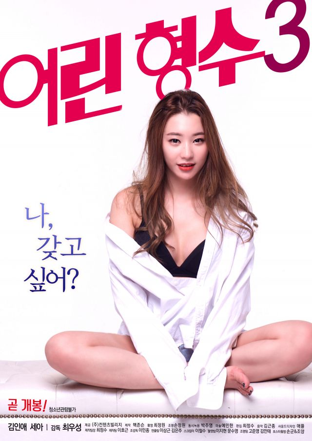 [18+ Korean] Young Sister-In-Law 3 (2017) WEB DL HD RIP [1GB][MP4]
